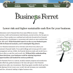 The Business Ferret – Financial Analysis Done Right